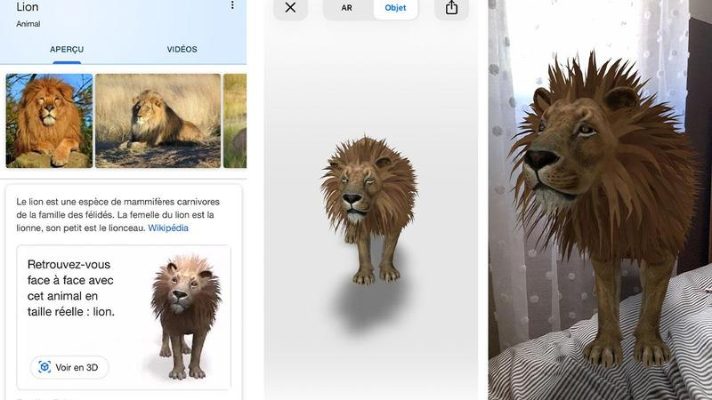 animaux 3d google copie